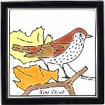 Wood Thrush Tile,Wood Thrush Wall Plaque,Wood Thrush Trivet